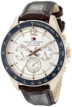 fashion наручные  мужские часы Tommy Hilfiger 1791118. Коллекция Luke